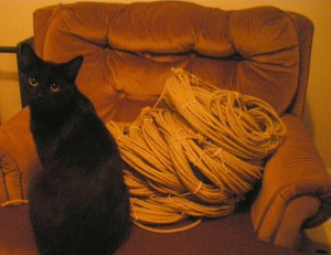 10 kg of raw hemp rope, bundled to go to the laundrymat.  Also pictured, The Kitten.  Who loooves the ropes.